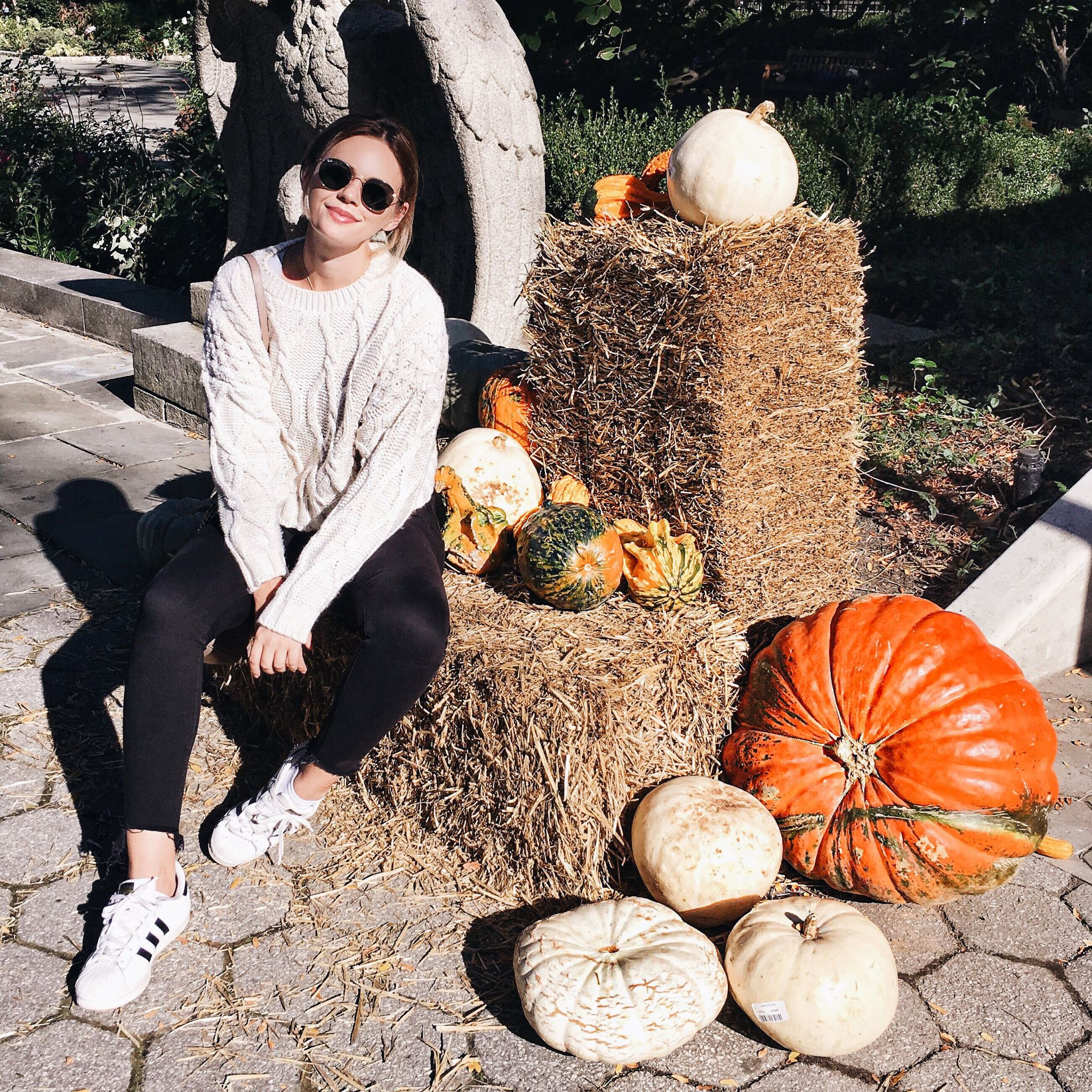 New york cocoa chelsea jesschamilton pumpkins central park